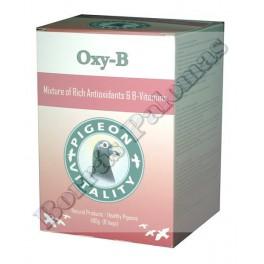 Oxy-B  bote de 400 g.